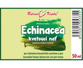 Echinacea (třapatka) kvetoucí nať (kapky - tinktura) 50 ml