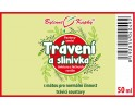 Trávení a slinivka kapky (tinktura) 50 ml