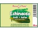 Echinacea (třapatka) kapky - kvetoucí nať + kořen (tinktura) 50