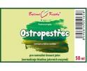 Ostropestřec - bylinné kapky (tinktura) 50 ml