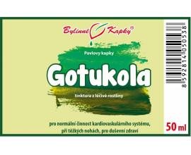 Gotukola (gotu kola) - bylinné kapky (tinktura) 50 ml