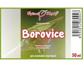Borovice pupeny (gemmoterapie) 50 ml