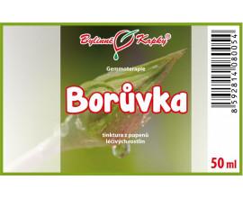 Borůvka - tinktura z pupenů (gemmoterapie) 50 ml