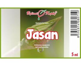 Jasan - tinktura z pupenů 5 ml - gemmoterapie