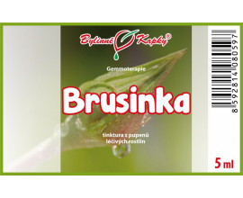 Brusinka - tinktura z pupenů 5 ml - gemmoterapie