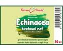 Echinacea (třapatka) kapky - kvetoucí nať (tinktura) 50 ml