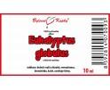 Eukalyptus globulus - 100% přírodní silice - esenciální (éterický) olej 10 ml