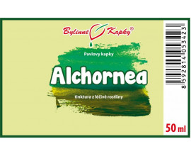 Alchornea list kapky (tinktura) 50 ml