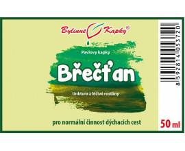 Břečťan - bylinné kapky (tinktura) 50 ml