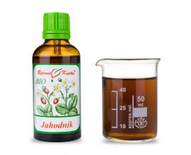 Jahodník list + květ BIO kapky (tinktura) 50 ml