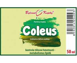 Coleus - bylinné kapky (tinktura) 50 ml