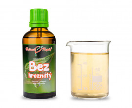 Bez hroznatý - tinktura z pupenů (gemmoterapie) 50 ml