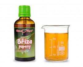 Bříza - tinktura z pupenů (gemmoterapie) 50 ml