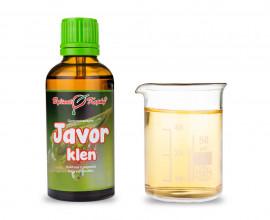 Javor klen - tinktura z pupenů (gemmoterapie) 50 ml