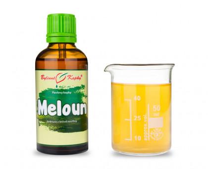 Meloun - bylinné kapky (tinktura) 50 ml