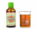 Nadýmání - bylinné kapky (tinktura) 50 ml