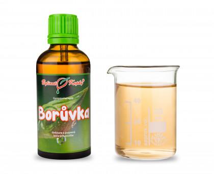 Borůvka 50 ml - gemmoterapie