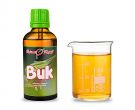 Buk - tinktura z pupenů (gemmoterapie) 50 ml