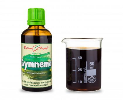 Gymnema (Gurmár) - bylinné kapky (tinktura) 50 ml