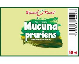 Mucuna pruriens - bylinné kapky (tinktura) 50 ml