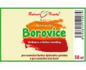 Borovice - bylinné kapky (tinktura)  50 ml