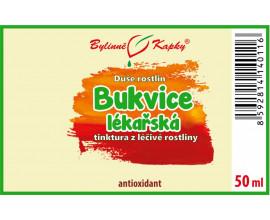 Bukvice lékařská - bylinné kapky (tinktura) 50 ml