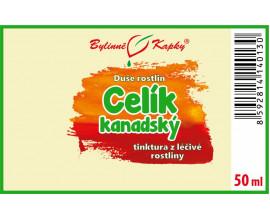 Celík (zlatobýl) kanadský - bylinné kapky (tinktura) 50 ml