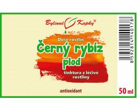 Černý rybíz plod - bylinné kapky (tinktura) 50 ml