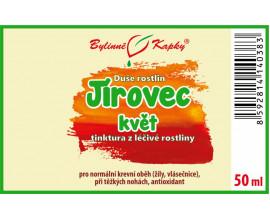 Jírovec květ - bylinné kapky (tinktura) 50 ml