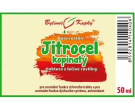 Jitrocel kopinatý - bylinné kapky (tinktura) 50 ml