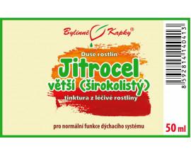 Jitrocel větší (širokolistý) - bylinné kapky (tinktura) 50 ml