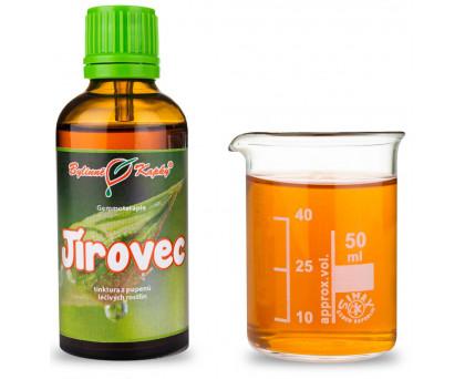 Jírovec 50 ml - gemmoterapie
