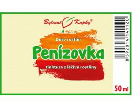 Penízovka - bylinné kapky (tinktura) 50 ml