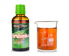 Brusinka 50 ml - gemmoterapie