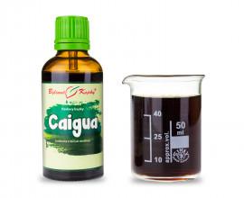 Caigua - bylinné kapky (tinktura) 50 ml