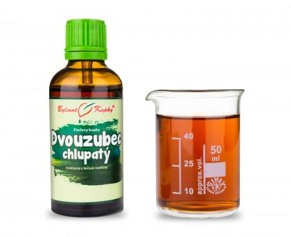 Dvouzubec chlupatý - bylinné kapky (tinktura) 50 ml