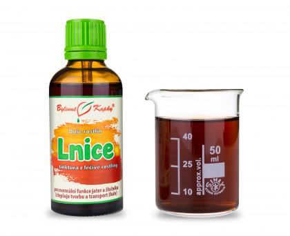 Lnice kapky (tinktura) 50 ml