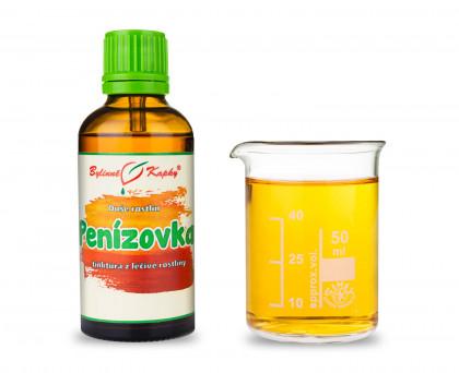 Plamienka zimná kvapky (tinktúra) 50 ml