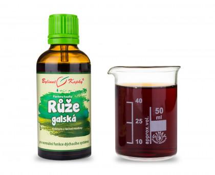 Růže galská - bylinné kapky (tinktura) 50 ml