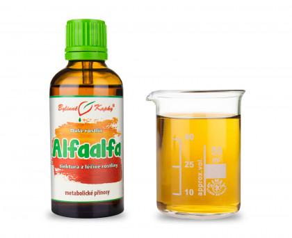 Alfaalfa - bylinné kapky (tinktura) 50 ml
