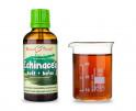 Echinacea purpurová kvapky - kvitnúca vňať + koreň (tinktúra) 50 ml
