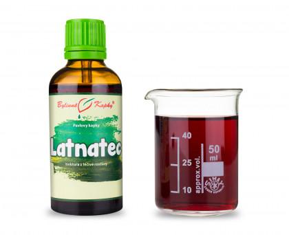 Latnatec - bylinné kapky (tinktura) 50 ml