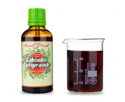 Základní přípravek (Netopýr 1) - bylinné kapky (tinktura) 50 ml