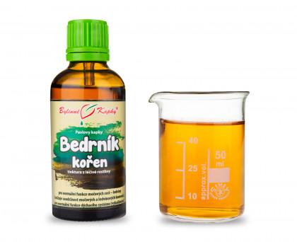 Bedrník kořen kapky (tinktura)  50 ml