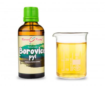 Borovice pyl (borovicový pyl) - bylinné kapky (tinktura)  50 ml