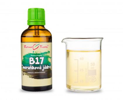 B 17 kapky (tinktura) 50 ml